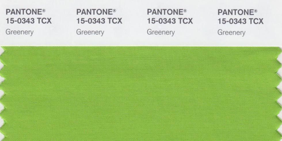 Pantone-colour-of-the-year-on-page
