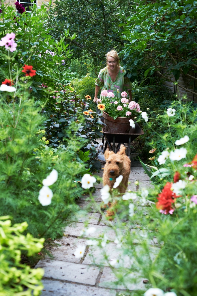 Interior Stylist Mary Norden with her Irish terrier Ned in her English garden