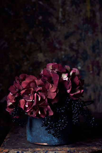 Deep crimson hydreangeas in a vase. Styling by Mary Norden, photographed by Polly Wreford