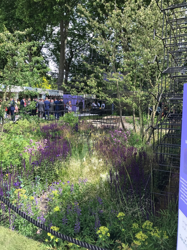 Breaking Ground garden at RHS CHelsea Flower show, designed by Andrew Wilson and Gavin McWilliam