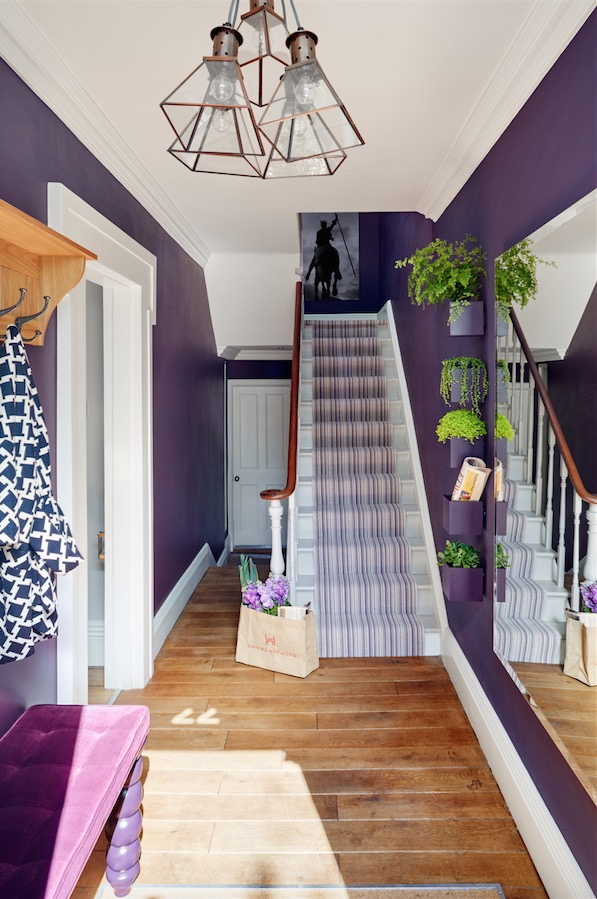 purple hallway designed by daniale hopwood