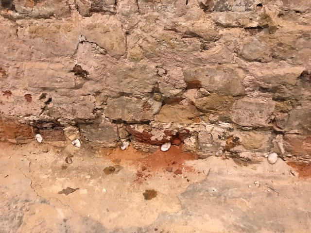 damp proof course in old victorian farm house