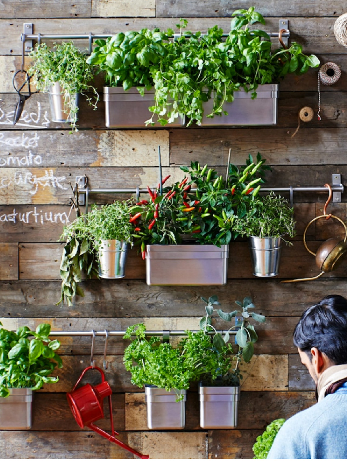Interior Designers Sophie Robinson talks kitchen update with an Ikea living wall on rustic wooden wall