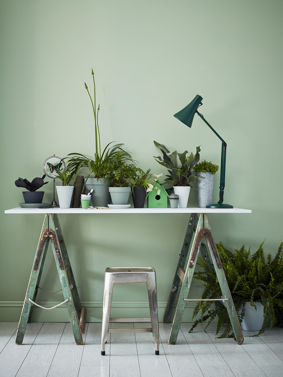 Latest crush for interior design is Mint green for it's fresh, uplifting tone. This pastel shade looks modern on all walls, withfoliage and potted plants for a botanical trend. Mint is set to be a key colour trend this year and well into 2020. Check out the blog for top tips and inspiration on using this hue. #sophierobinson #mint #colourcrush #lovecolour
