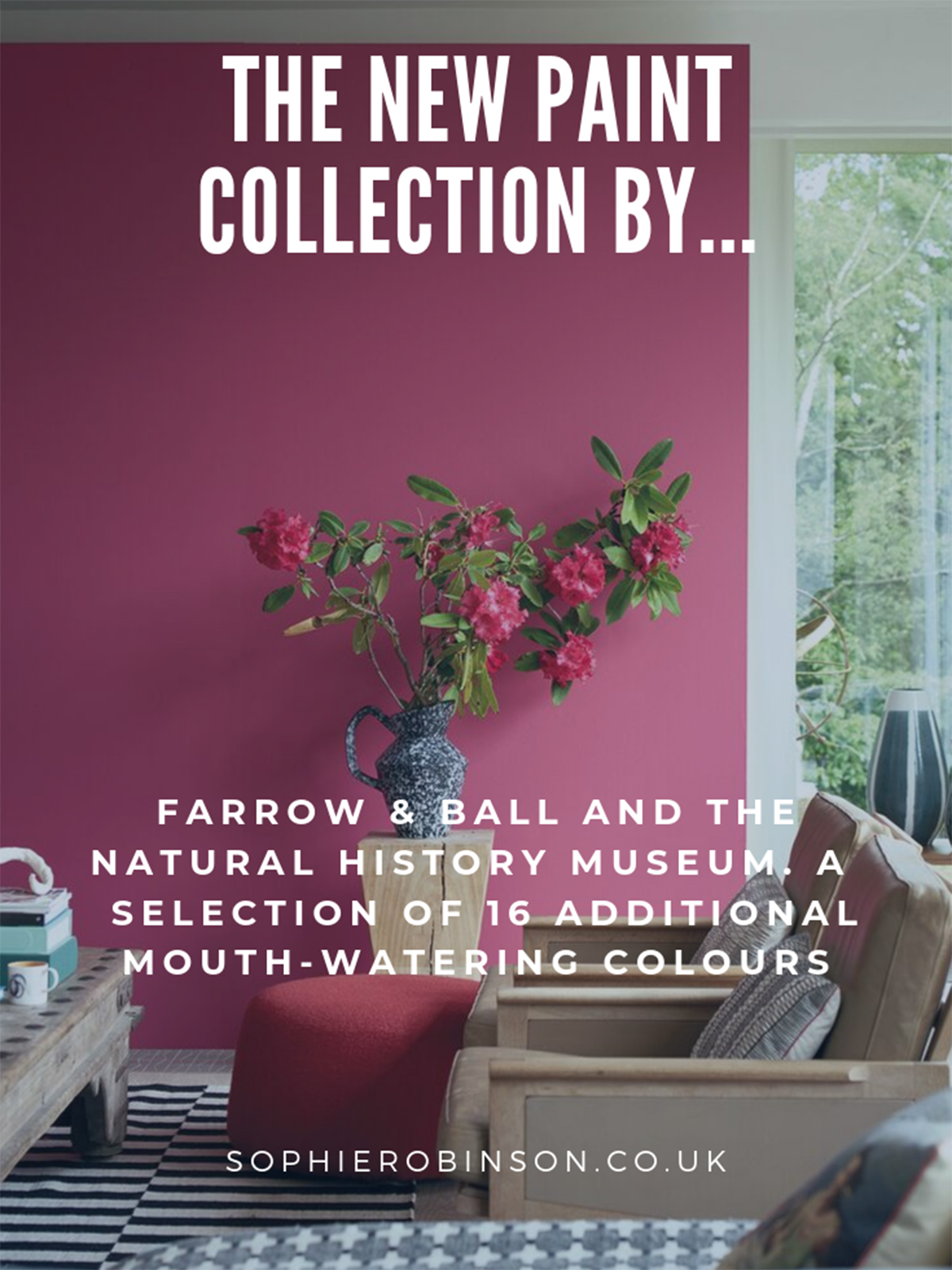 New paint collection from Farrow & Ball and The Natural History museum. Find out more with Sophie Robinson here. #farrowandball #paintcollection #sophierobinson